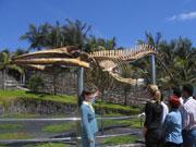 Whale skeleton at Museo de Cetáceos de Canarias, Lanzarote. Photo by Lanzarote Tourist Board